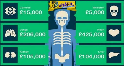 Πόσο κοστίζουν στη μαύρη αγορά τα ανθρώπινα μέλη - Ένα ανατριχιαστικό κοστολόγιο!