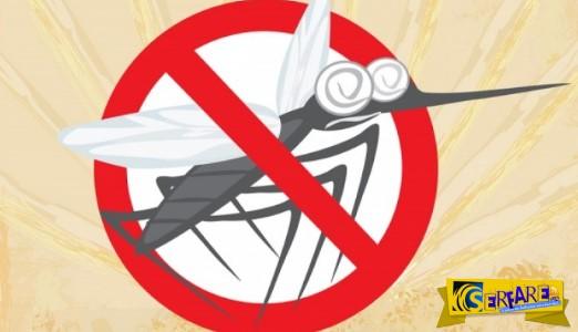 Ο πιο εύκολος και αποτελεσματικός τρόπος για να διώξετε τα κουνούπια!