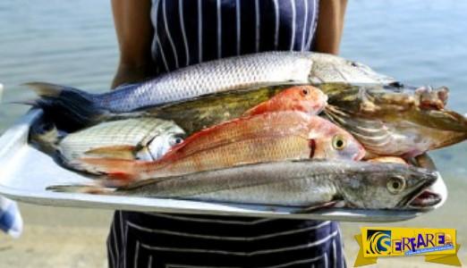 Πόσο ασφαλής είναι η κατανάλωση θαλασσινών;