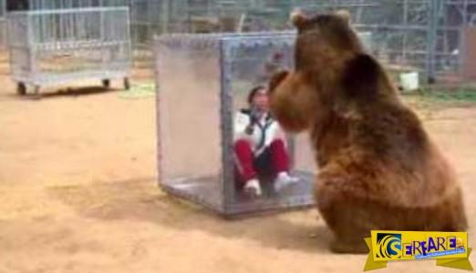 Απίστευτη η Ιαπωνική τηλεόραση: Πεινασμένη αρκούδα τρομοκρατεί τους παίκτες!