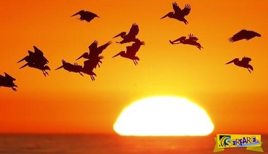 Κάπου βραδιάζει: Δείτε real time κάθε ανατολή και ηλιοβασίλεμα στον κόσμο!