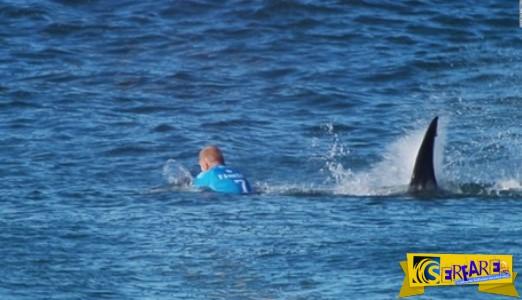 Συγκλονιστικό βίντεο: Του επιτέθηκε καρχαρίας και σώθηκε από θαύμα!