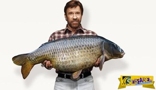 Ανέκδοτο: Πως ψαρεύει ο Τσακ Νόρις ...