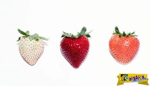 Πώς μια εταιρεία αποφάσισε να δημιουργήσει τη φράουλα του μέλλοντος!
