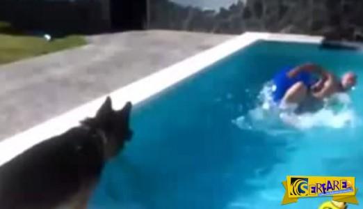 Σκύλος έσωσε το αφεντικό του από «πνιγμό»!