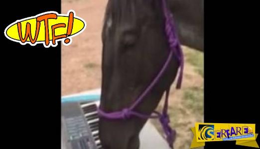 Δείτε τo άλογο που παίζει πιάνο με τα χείλη του - Τρομερός «δεξιοτέχνης»
