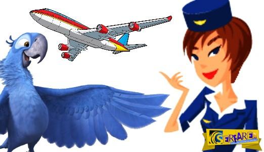Ανέκδοτο: Ο Παπαγάλος στο Αεροπλάνο ...