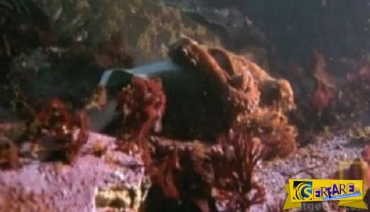 ΦΟ-ΒΕ-ΡΟ! Τεράστιο χταπόδι σκοτώνει καρχαρία! Δείτε το σοκαριστικό βίντεο!