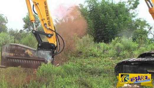 Τρομακτικό μηχάνημα εξαφανίζει δέντρα με ένα απλό άγγιγμα!
