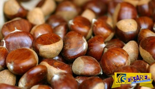 Κάστανα: Απίστευτα τα οφέλη τους στην υγεία! Δείτε που οφελούν και πόσα πρέπει να τρώτε