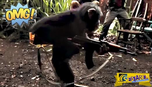 """Πίθηκος """"βουτάει"""" Καλάσνικοφ κι αρχίζει να πυροβολεί! Ευτυχώς δεν ήξερε να σημαδεύει ..."""