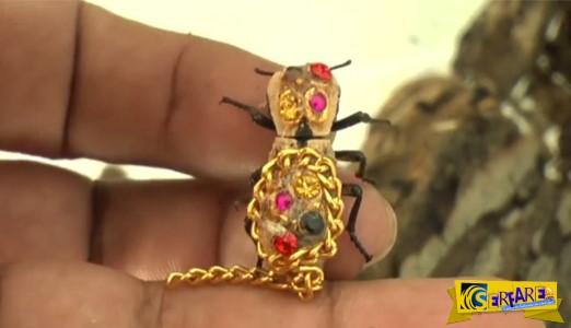 Ζωντανά σκαθάρια φοριούνται ως κοσμήματα!