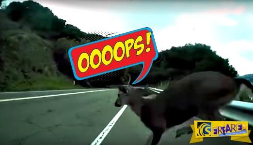 Οι πιο απίθανες συγκρούσεις που έχετε δει σε ένα βίντεο!