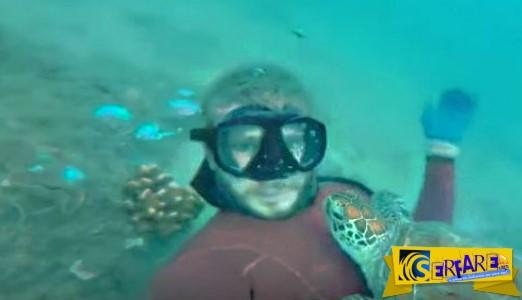 O δύτης ξόδεψε 3 ώρες για να κερδίσει την εμπιστοσύνη της χελώνας - Αυτό που συνέβη μετά τον αποζημίωσε με τον καλύτερο τρόπο!