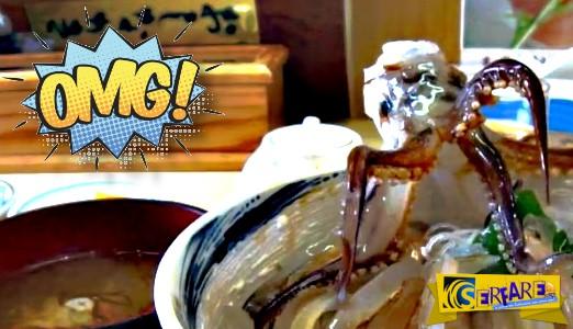 Αυτό είναι το πιο αηδιαστικό γκουρμέ πιάτο στον κόσμο: Θα το τρώγατε; Πιάτο για... γερά νεύρα ...