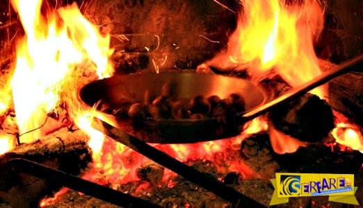 Πώς βγήκε η φράση βγάζω τα κάστανα από τη φωτιά!