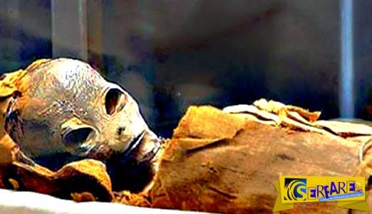 Μυστήριο στην Αίγυπτο: Βρέθηκε μούμια που μοιάζει με... εξωγήινο!
