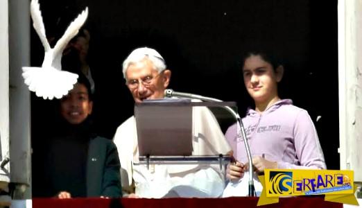 Ανατριχιαστικό! Η προφητεία με το περιστέρι του Πάπα που το κατασπάραξε ένα κοράκι βγήκε...