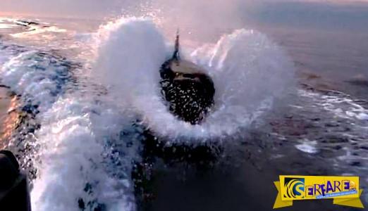 Ψαράδες δέχτηκαν επίθεση - 30 όρκες κυνηγούσαν το αλιευτικό τους!