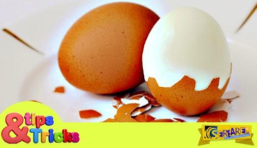 Απίστευτοι Τρόποι για να Χρησιμοποιήσετε τα Τσόφλια Αυγών!