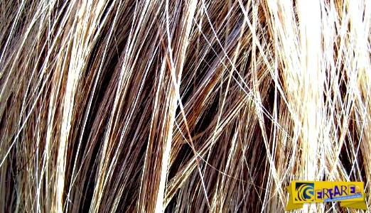 Γιατί δεν πρέπει ποτέ να κόβετε τα μαλλιά σας όταν είναι βρεγμένα