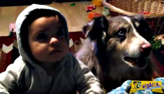 Σε ένα ξεκαρδιστικό video, σκύλος λέει «μαμά» για να φάει πριν το μωρό