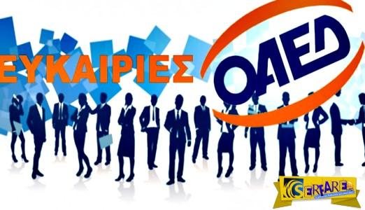 OAΕΔ - ΠΡΟΛΑΒΕΤΕ: Εξάμηνη απασχόληση με μισθό 916 ευρώ!
