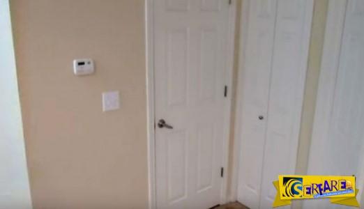 Γάτα - νίντζα ανοίγει κλειστές πόρτες και με... εμπόδια!