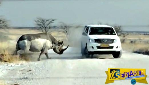 Συγκλονιστικό βίντεο: Η στιγμή που ένας ρινόκερος επιτίθεται σε τζιπ με τουρίστες...
