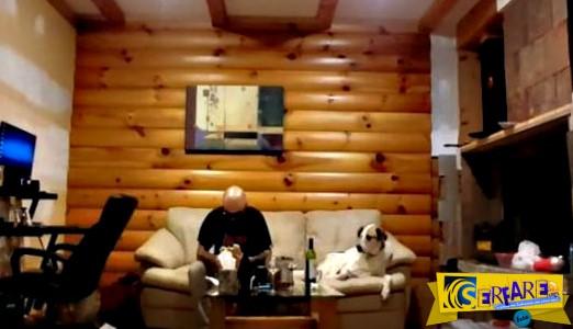 Το βλέμμα του σκύλου όταν βλέπει τον ιδιοκτήτη του να τρώει, χωρίς να να του δίνει μια μπουκιά!