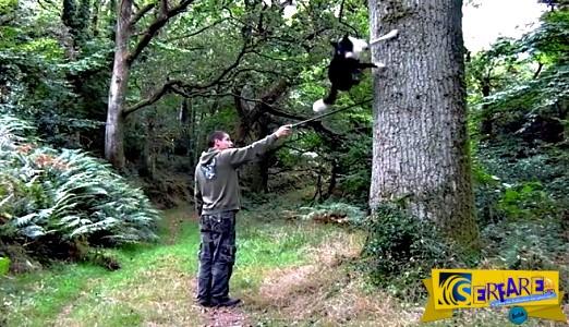 Ο σκύλος που δεν σταματά σε κανένα εμπόδιο- Δείτε τι κάνει ...