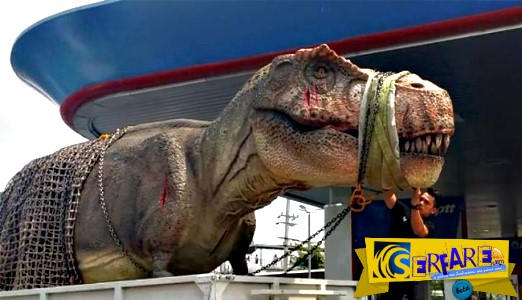Δεινόσαυρος... κόλλησε στην κίνηση και επικράτησε χάος!