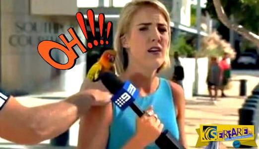 """Ξεκαρδιστικό βίντεο! Ρεπόρτερ """"τρομοκρατήθηκε"""" από έναν παπαγάλο!"""