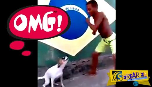 Απίστευτο! Σκύλος από τη Βραζιλία χορεύει σάμπα!
