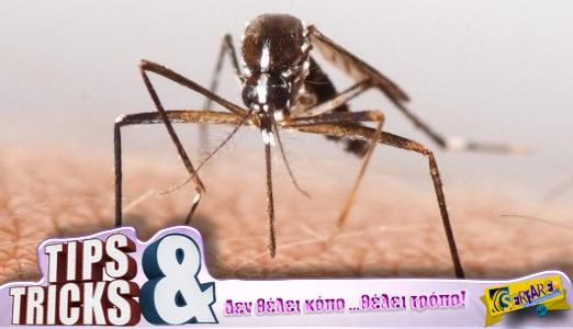 Δείτε το κόλπο για να μην σας τσιμπήσουν φέτος τα κουνούπια!