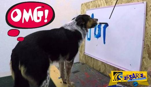 Πανέξυπνο σκυλί μπορεί και γράφει το όνομά του!
