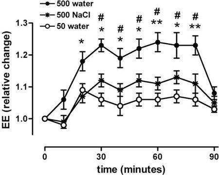 Νερό: Πόσο πρέπει να πίνετε – Μεταβολισμός και απώλεια βάρους (σχεδιάγραμμα)