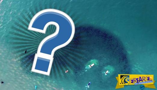 Tί κατέγραψε drone να κολυμπάει ανάμεσα σε ένα κοπάδι από ψάρια!