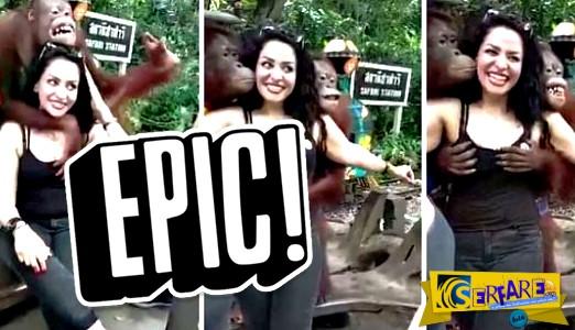 Τουρίστρια έβγαλε αναμνηστική φωτογραφία με ουρακοτάγκο και της έπιασε το στήθος!