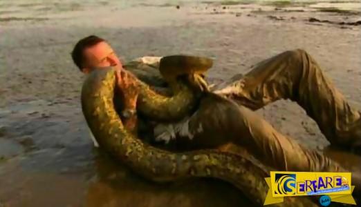 Τρομερές μάχες: Όταν οι άνθρωποι... τα βάζουν με τα φίδια!