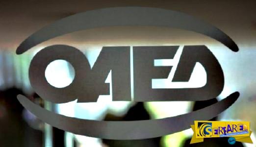 Ποια προγράμματα ΟΑΕΔ αναμένονται να ξεκινήσουν ...