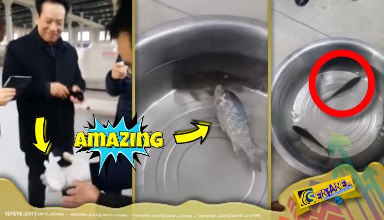 Κατεψυγμένο ψάρι επανέρχεται στη ζωή μέσα σε δευτερόλεπτα!