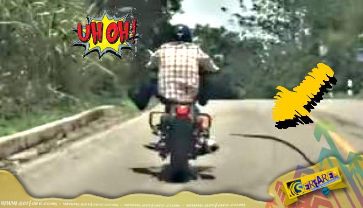 Οδηγός μοτοσικλέτας δέχεται... επίθεση από «ιπτάμενο» φίδι!