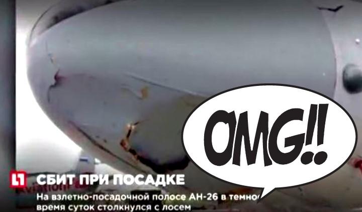 Ρωσικό αεροσκάφος συγκρούστηκε με..ελάφι!