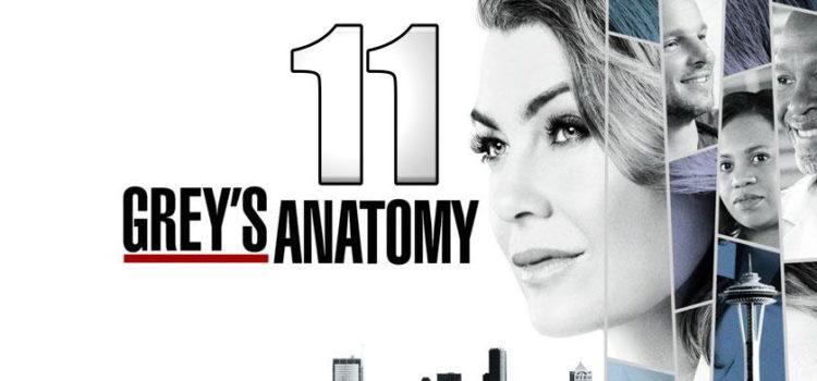 Grey's Anatomy 11ος κύκλος Έρχεται στον Alpha!