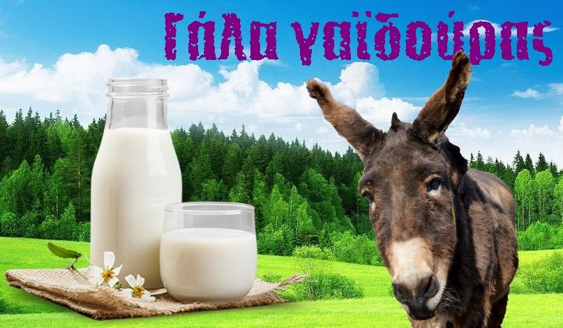 Γάλα γαϊδούρας: Τα οφέλη για την υγεία σας