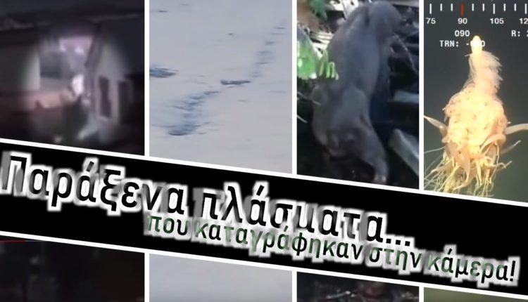 Παράξενα πλάσματα που καταγράφηκαν στην κάμερα!