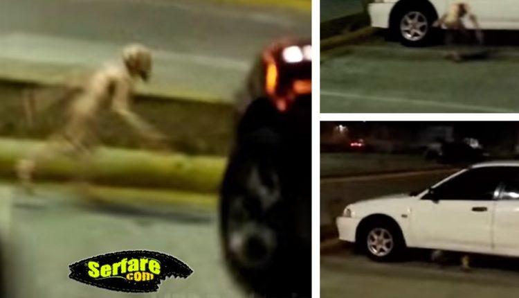 Παράξενο πλάσμα βιντεοσκοπεί νεαρός σε πάρκινγκ στις ΗΠΑ