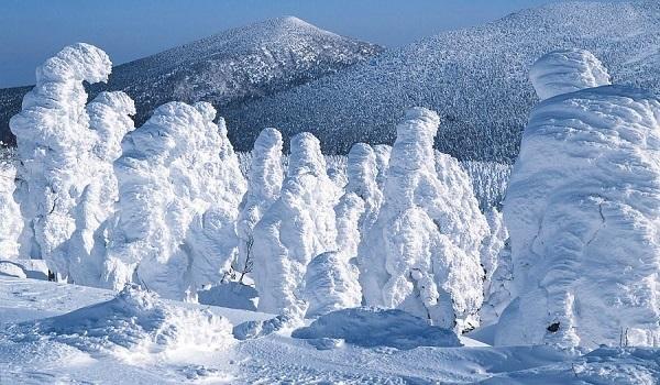 """Τα """"τέρατα του χιονιού"""" που εμφανίζονται κάθε χειμώνα στην Ιαπωνία"""